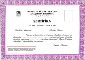 sertifika-ornegi1